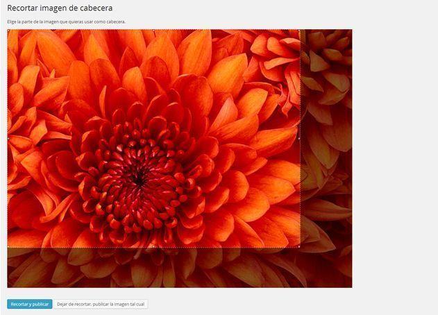 5 Cambiar-tema-Wordpress-Cabecera-recorte
